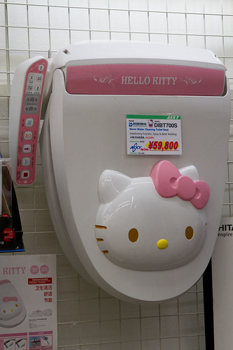 Japanese Toilet - not a litter box